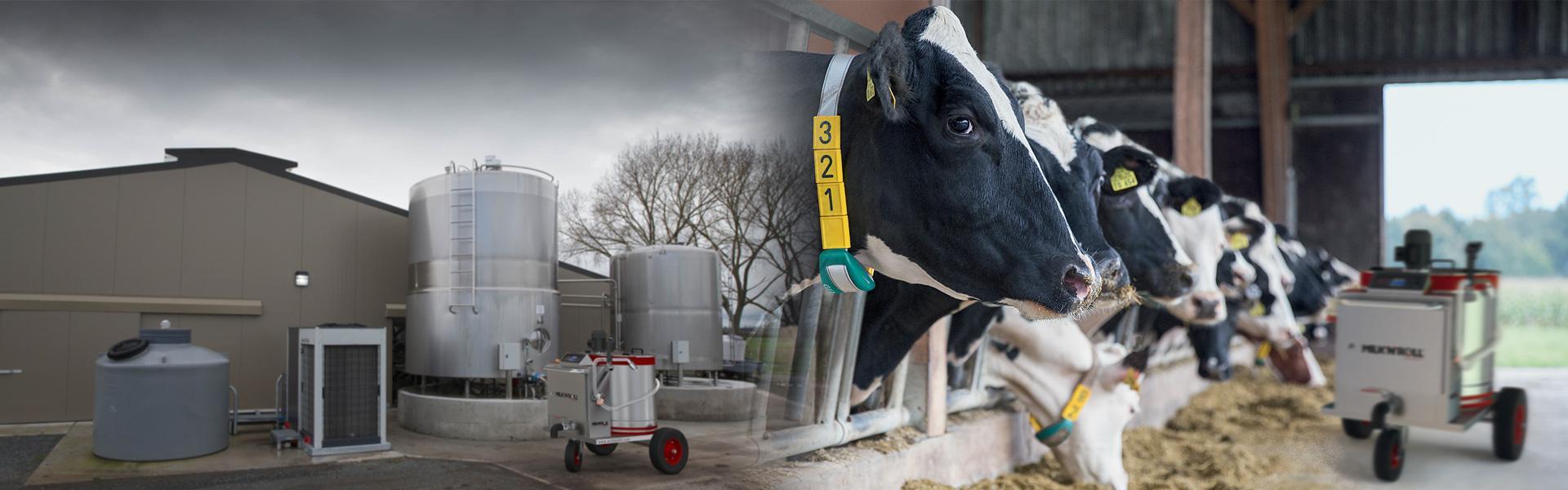 Milk Taxi For Dairy Farm