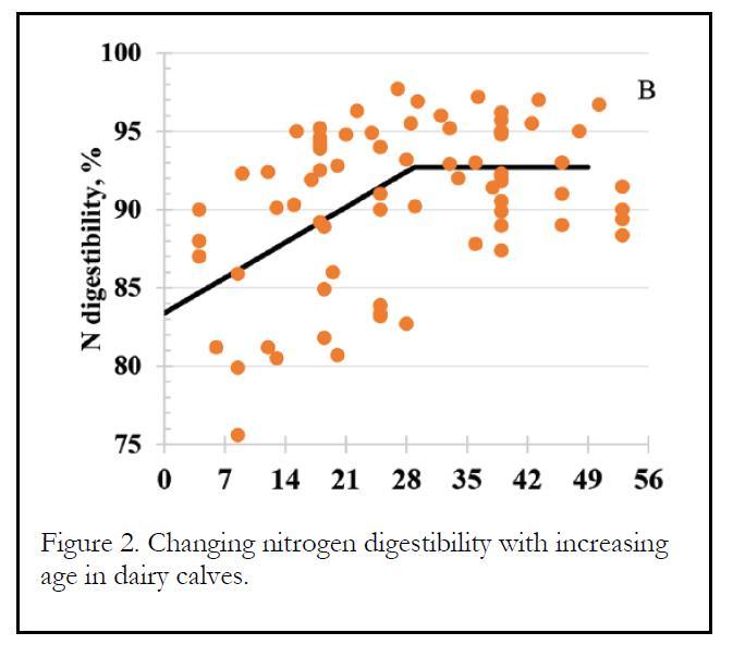 Nitrogen Digestibility in Dairy Calves